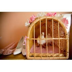 Svatební holubice s klecí