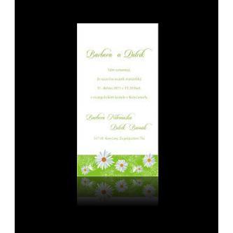 Moderní svatební oznámení 95x170, kartičkové oznámení, zelené s motivem sedmikrásek.